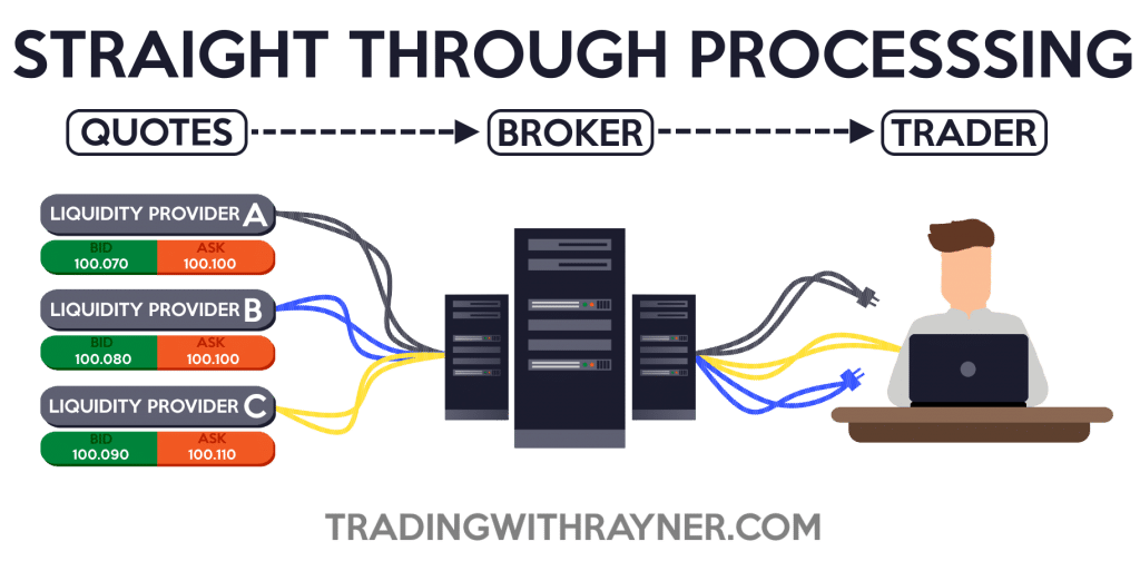 True stp forex brokers